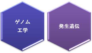 4つの研究プロジェクト